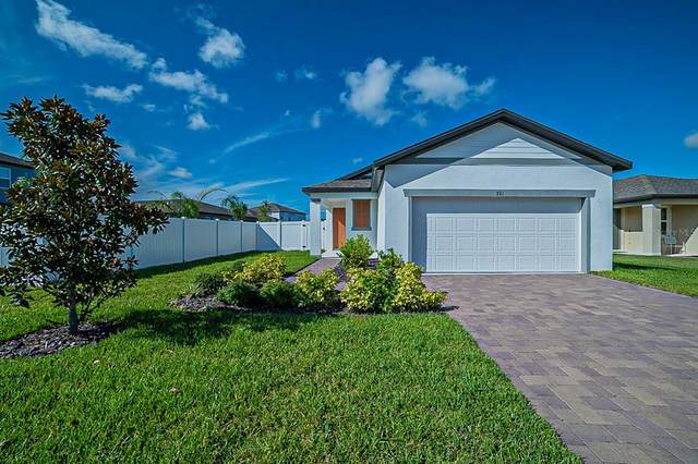 721 Ladyfish Lane, New Smyrna Beach, FL 32168 (MLS #O5974340) :: Vacasa Real Estate