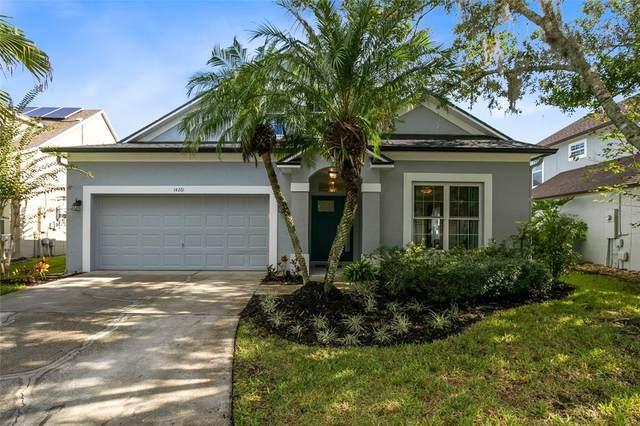 14261 Squirrel Run, Orlando, FL 32828 (MLS #O5974384) :: Cartwright Realty