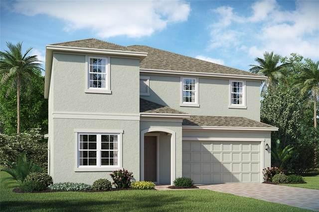 2041 Brillante Drive #117, Saint Cloud, FL 34771 (MLS #O5974481) :: CENTURY 21 OneBlue