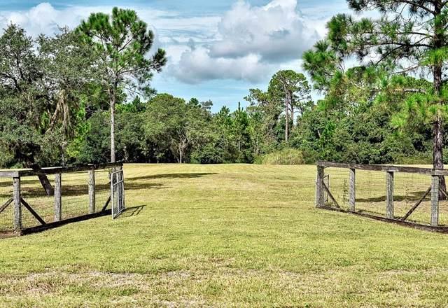 463 Lake Marion Road W, Haines City, FL 33844 (MLS #O5974498) :: Pepine Realty