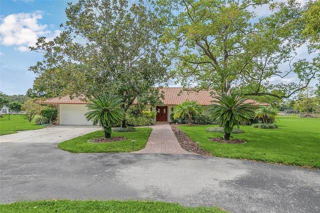 3438 Sterling Lane, Orlando, FL 32817 (MLS #O5974553) :: Vacasa Real Estate