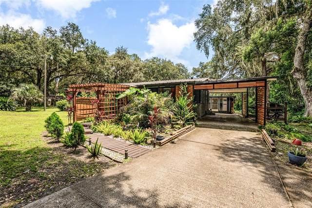 3483 County Road 513, Wildwood, FL 34785 (MLS #O5974618) :: Vacasa Real Estate