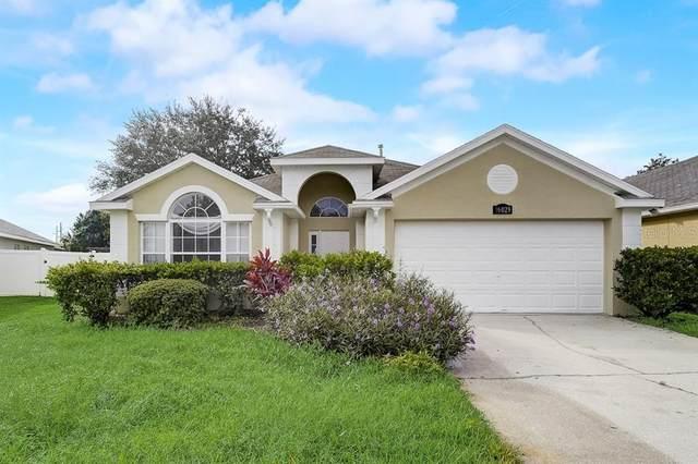 16029 Bay Vista Drive, Clermont, FL 34714 (MLS #O5974689) :: CENTURY 21 OneBlue