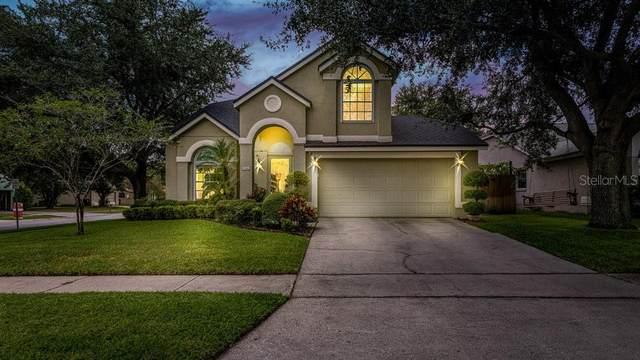 1386 Tindaro Drive, Apopka, FL 32703 (MLS #O5974749) :: Bustamante Real Estate