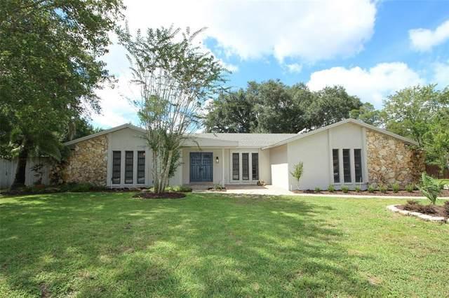 255 E Hornbeam Drive, Longwood, FL 32779 (MLS #O5974768) :: Zarghami Group