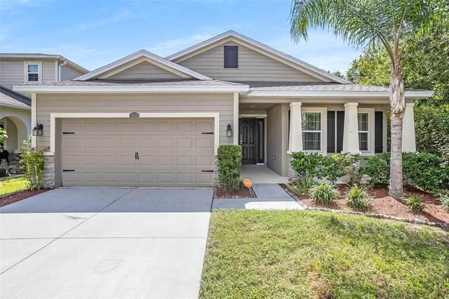 10411 Avian Forrest Drive, Riverview, FL 33578 (MLS #O5974793) :: Bustamante Real Estate