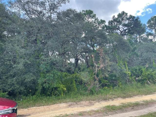 Maryland, Paisley, FL 32767 (MLS #O5974799) :: The Hustle and Heart Group