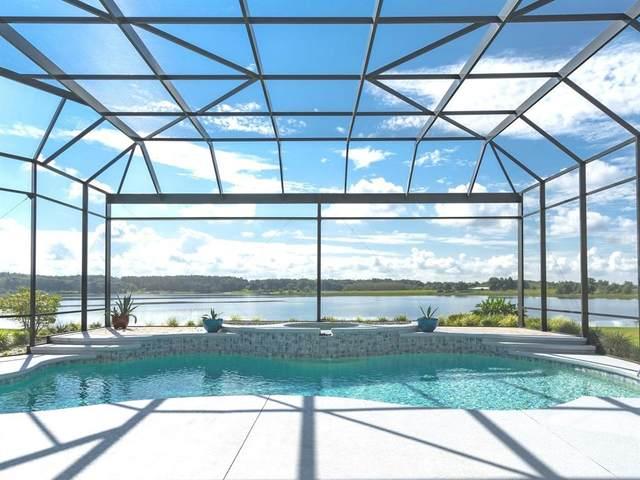 18920 Blanchester Court, Umatilla, FL 32784 (MLS #O5974895) :: Vacasa Real Estate