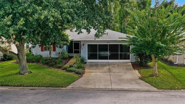 32908 Enchanted Oaks Lane, Leesburg, FL 34748 (MLS #O5975018) :: Your Florida House Team