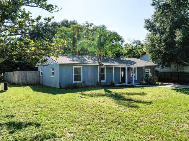 1380 Palm Drive, Mount Dora, FL 32757 (MLS #O5975085) :: Your Florida House Team