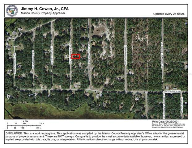 Clearwater Court SW, Dunnellon, FL 34431 (MLS #O5975127) :: The Hustle and Heart Group