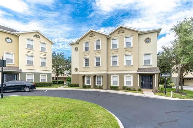 10144 Arbor Run Drive #84, Tampa, FL 33647 (MLS #O5975160) :: Team Bohannon