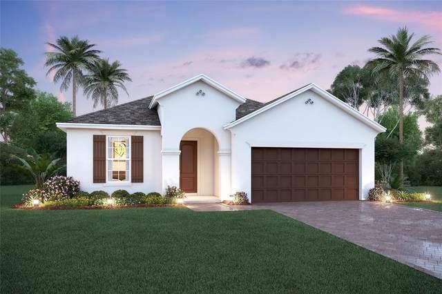 1743 Hamlin Ridge Road, Minneola, FL 34715 (MLS #O5975166) :: Keller Williams Realty Select