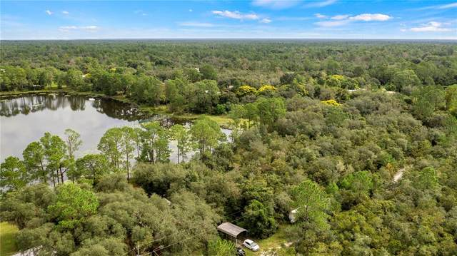 St Claire Lake Drive, Deland, FL 32720 (MLS #O5975361) :: Your Florida House Team