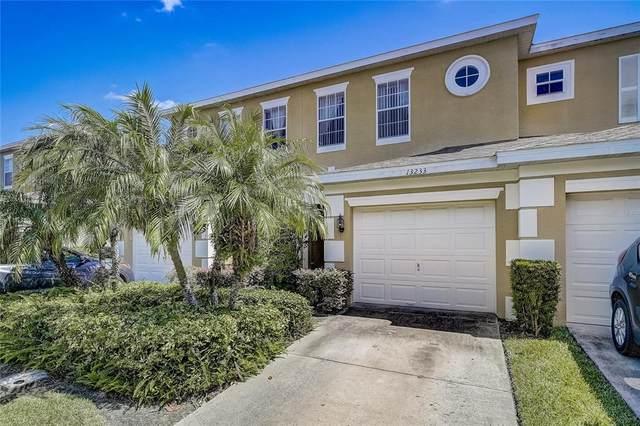 13233 Daniels Landing Circle, Winter Garden, FL 34787 (MLS #O5975369) :: Century 21 Professional Group