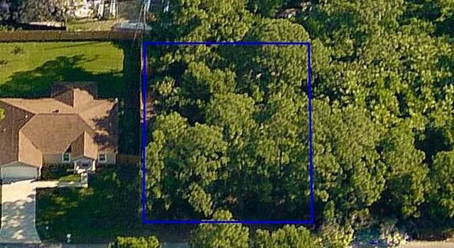 1647 Sadigo Street SE, Palm Bay, FL 32909 (MLS #O5975370) :: Everlane Realty
