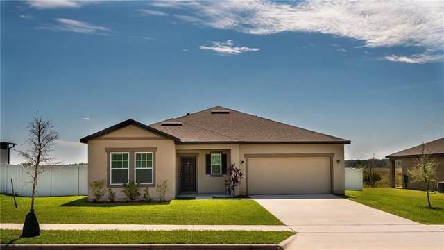 16317 Blooming Cherry Drive, Groveland, FL 34736 (MLS #O5975383) :: RE/MAX LEGACY