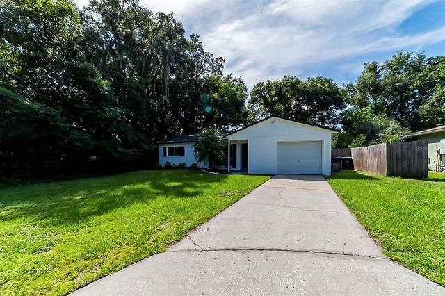 7759 Groveridge Court, Orlando, FL 32810 (MLS #O5975390) :: Cartwright Realty