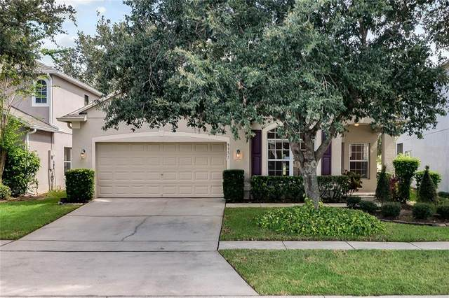 9951 Indigo Bay Circle, Orlando, FL 32832 (MLS #O5975473) :: Armel Real Estate