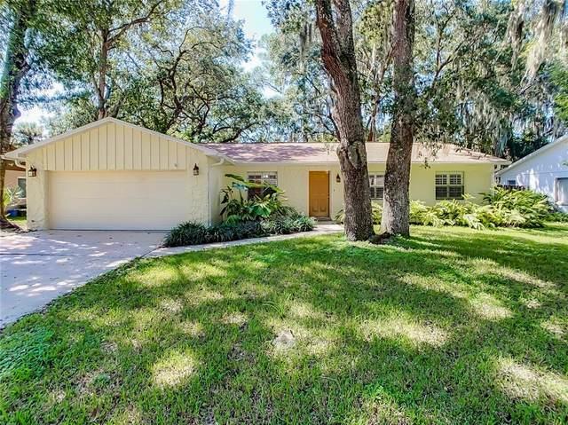 284 Brandy Hills Drive, Port Orange, FL 32129 (MLS #O5975546) :: Pepine Realty