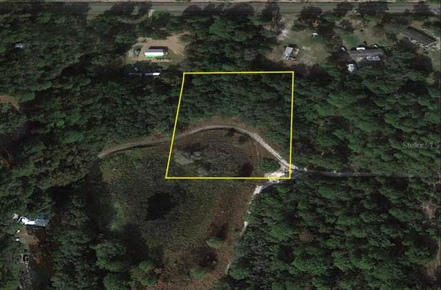 8141 SW 146TH Place, Dunnellon, FL 34432 (MLS #O5975547) :: Your Florida House Team