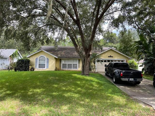 2649 Waterview Drive, Eustis, FL 32726 (MLS #O5975581) :: The Home Solutions Team | Keller Williams Realty New Tampa