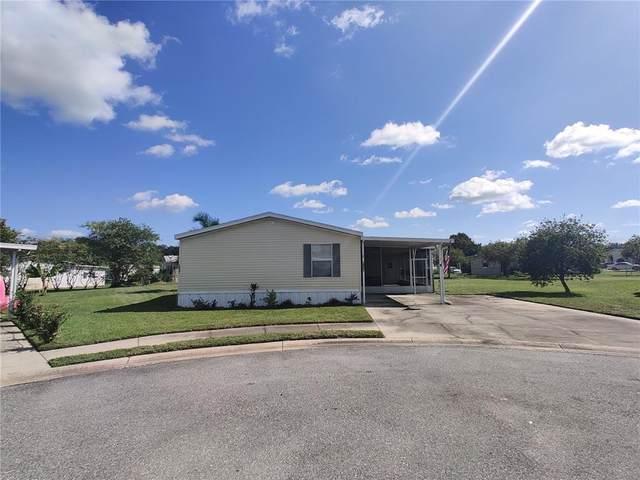 14041 Roserush Court, Astatula, FL 34705 (MLS #O5975605) :: Aybar Homes
