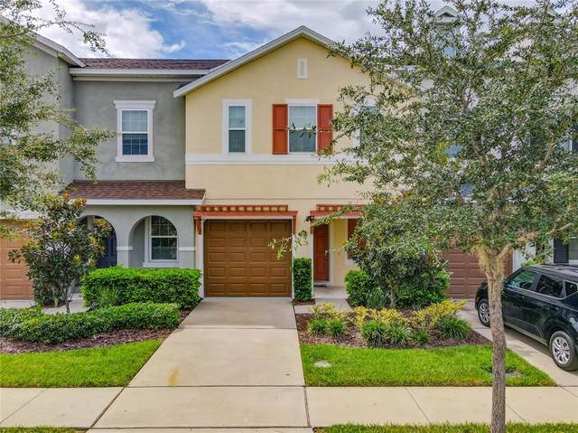 561 Fortanini Circle, Ocoee, FL 34761 (MLS #O5975607) :: Cartwright Realty