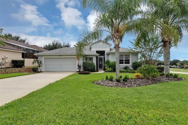 3631 Clipper Way, Tavares, FL 32778 (MLS #O5975633) :: CARE - Calhoun & Associates Real Estate