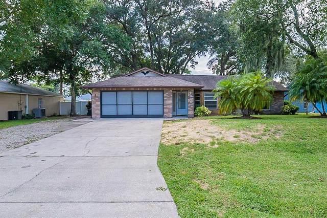 2916 Umbrella Tree Drive, Edgewater, FL 32141 (MLS #O5975864) :: Cartwright Realty