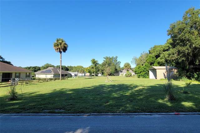 Tomberlin Lane, Mount Dora, FL 32757 (MLS #O5975875) :: GO Realty