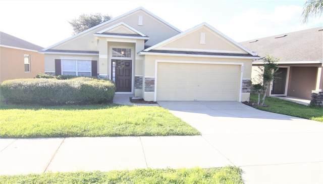 327 Red Kite Drive, Groveland, FL 34736 (MLS #O5975899) :: The Duncan Duo Team