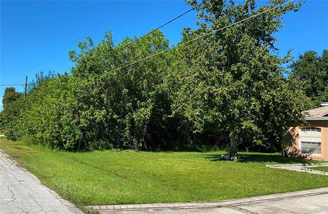 Nancy Court, Kissimmee, FL 34759 (MLS #O5975901) :: McConnell and Associates
