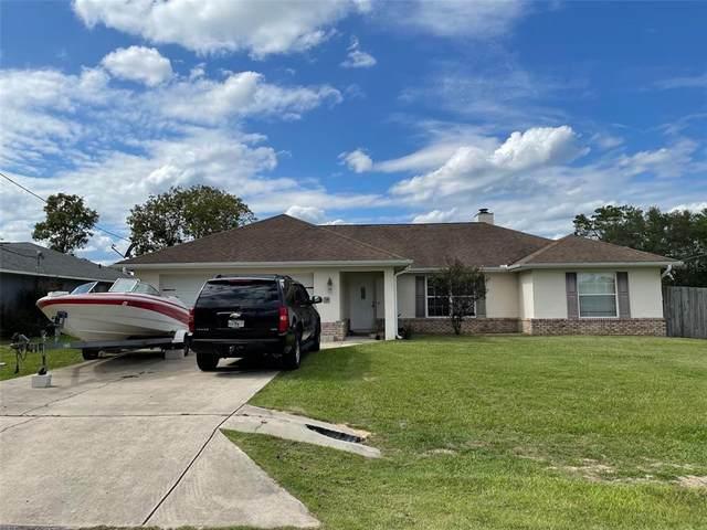 34 Pecan Run Terrace, Ocala, FL 34472 (MLS #O5976023) :: The Truluck TEAM