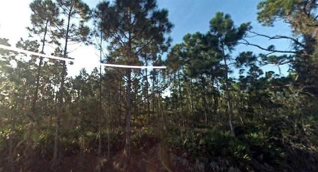 27103 La Coquina Drive, Punta Gorda, FL 33955 (MLS #O5976119) :: Delgado Home Team at Keller Williams