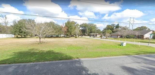1526 Mink Drive, Apopka, FL 32703 (MLS #O5976202) :: Delgado Home Team at Keller Williams