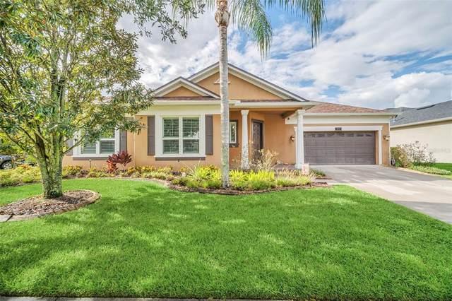 13869 Caywood Pond Drive, Windermere, FL 34786 (MLS #O5976290) :: Bustamante Real Estate