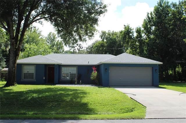 2512 Tamarind Drive, Edgewater, FL 32141 (MLS #O5976291) :: Team Turner