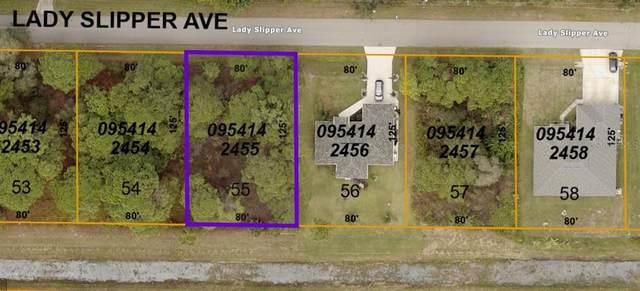 Lady Slipper Avenue, North Port, FL 34291 (MLS #O5976450) :: Delgado Home Team at Keller Williams