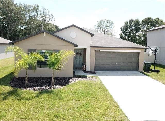 4148 Salt Springs Lane, Lakeland, FL 33811 (MLS #O5976585) :: Prestige Home Realty