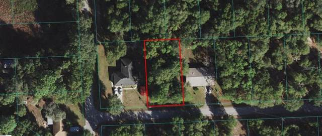 SE 165TH Court, Ocklawaha, FL 32179 (MLS #O5976932) :: Global Properties Realty & Investments