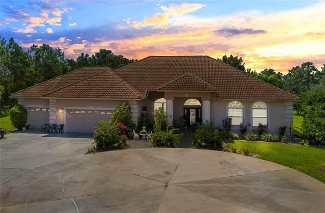 19500 Paddock Street, Orlando, FL 32833 (MLS #O5976993) :: Delgado Home Team at Keller Williams