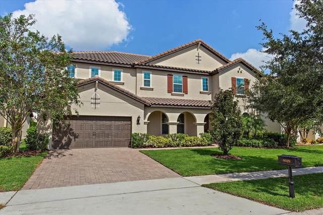 8629 Chilton Drive, Orlando, FL 32836 (MLS #O5977129) :: Bustamante Real Estate