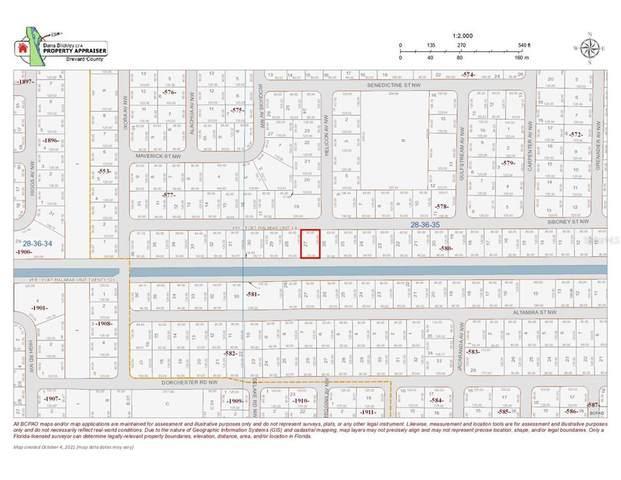 1106 Siboney Street NW, Palm Bay, FL 32907 (MLS #O5977238) :: Orlando Homes Finder Team