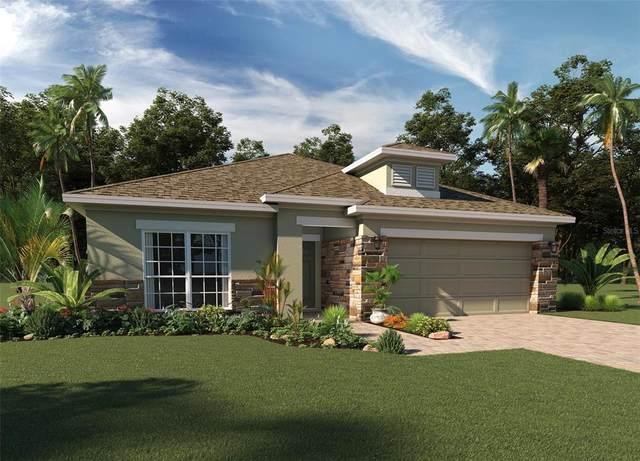 2805 Nottel Drive, Saint Cloud, FL 34772 (MLS #O5977307) :: Orlando Homes Finder Team