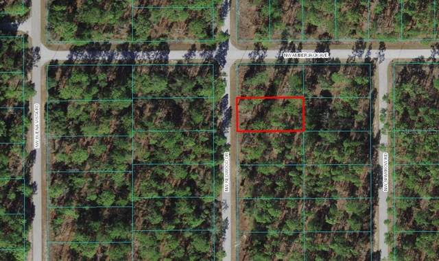 NW Redwood Drive, Dunnellon, FL 34431 (MLS #O5977406) :: Global Properties Realty & Investments