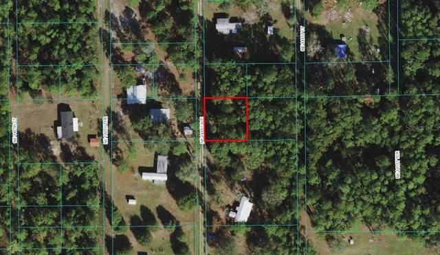 NE 141ST Avenue, Fort Mc Coy, FL 32134 (MLS #O5977429) :: Everlane Realty