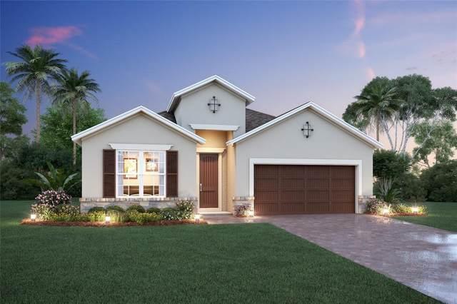 1727 Hamlin Ridge Road, Minneola, FL 34715 (MLS #O5977546) :: Keller Williams Realty Select