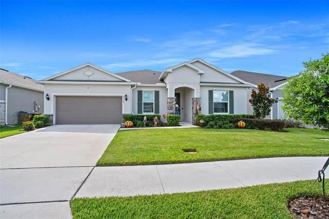 2318 Nuthatch Street, Saint Cloud, FL 34771 (MLS #O5977665) :: McConnell and Associates