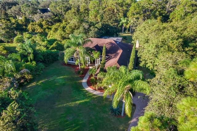 12124 Rambling Oak Boulevard, Orlando, FL 32832 (MLS #O5977764) :: McConnell and Associates